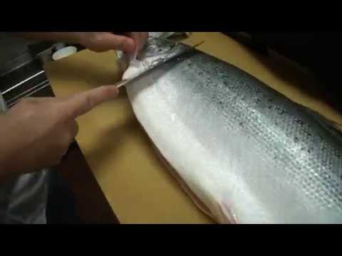 How To Fillet a Whole Salmon – How To Make Sushi Series