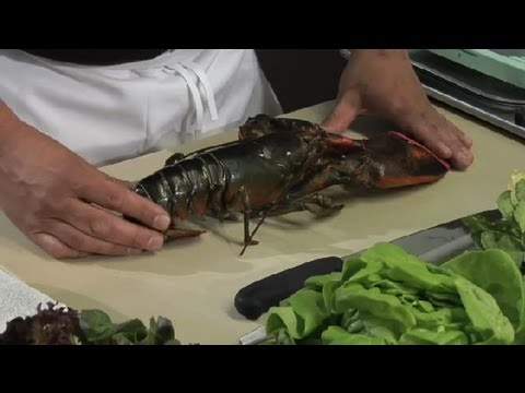 How to Make Lobster Salad : Lobster Salads