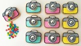 CAMERA PINATA COOKIES How To Cook That Ann Reardon Sugar Cookie Recipe