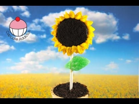 No-Bake Sunflower Cookie Pops! Plants vs Zombies Cakepops  – A Cupcake Addiction How To Tutorial