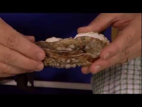 How to Shuck an oyster – GoodFood.com – BBC Food